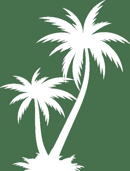 background-art-palm-tree